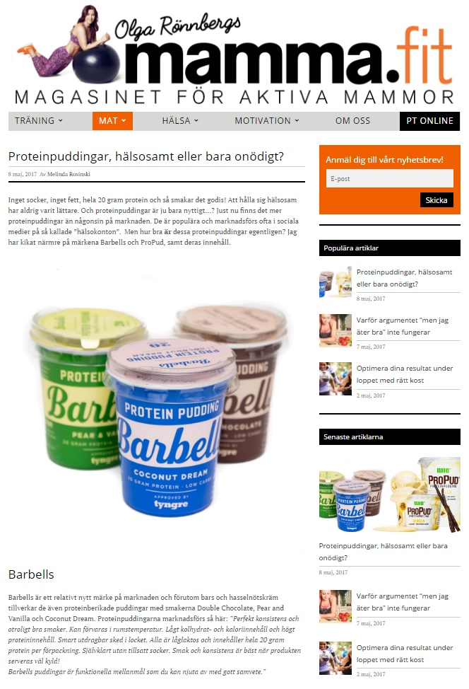 artikel proteinpudding