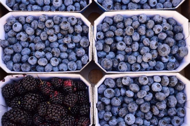 berries-1632690_960_720