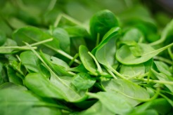 spinach-2216967_960_720