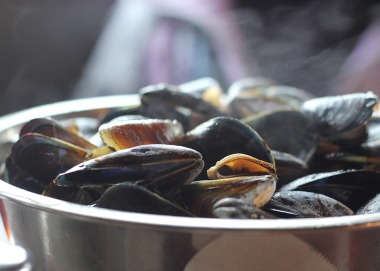 mussels-811759_960_720