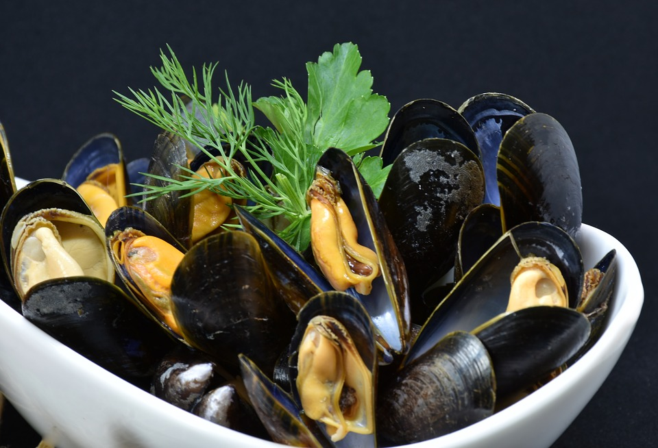 mussels-3148429_960_720