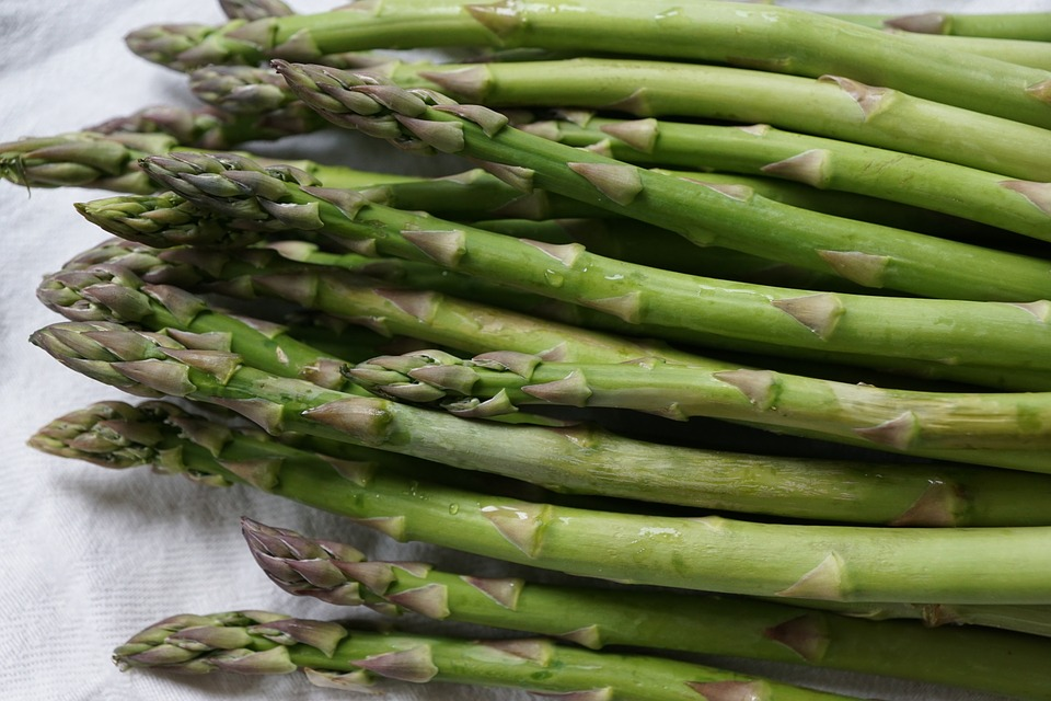 asparagus-761220_960_720